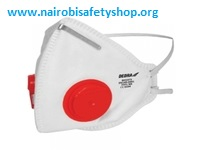 Workman Dust Mask FFP1